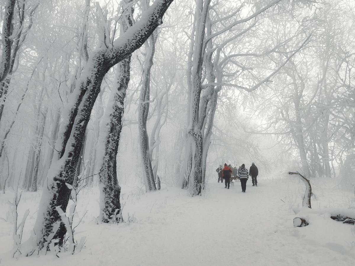 Velká Javořina, Silvestr 2018