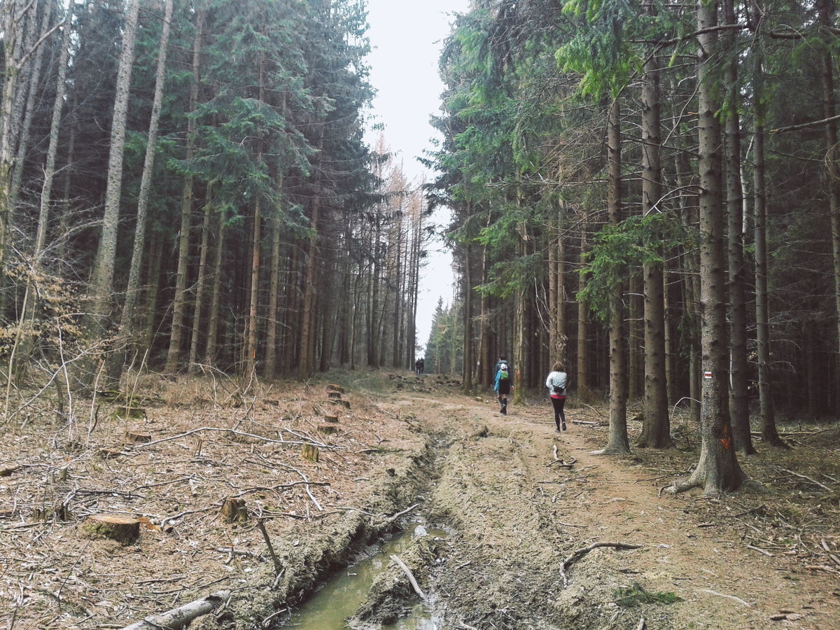 Vandrácká padesátka přes Bílé Karpaty