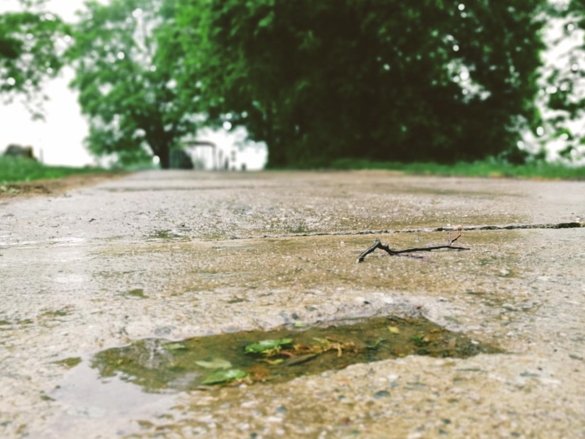 Vnorovy v dešti